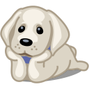 dog-labrador-icon